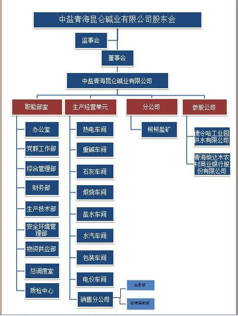 公司组织机构图.jpg